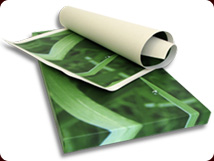 rolled and stretched canvases